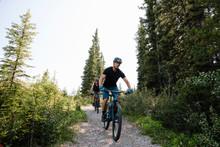 Man Mountain Biking On Trail In Woods