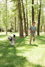 Boy Walking Dog In Urban Park