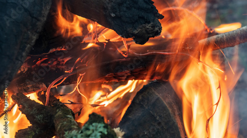 Burning wood at evening. Campfire at touristic camp at nature. Flame amd fire sparks on dark abstract background. Hellish fire element. Fuel, power and energy
