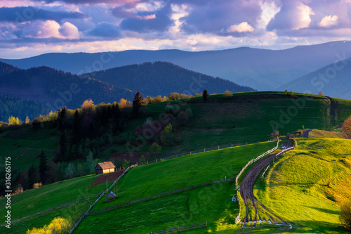 Obraz mountainous rural landscape in evening light. wooden fence along the path through rolling hills in fresh green grass. beautiful scenery in springtime. purple clouds on the sky - fototapety do salonu