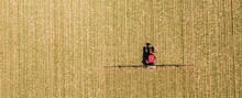 Aerial Image Of Tractor Sprayi...