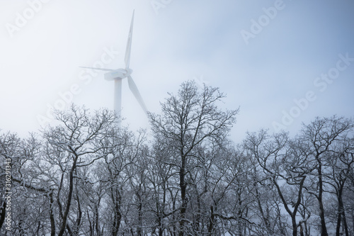 Photo Wind power
