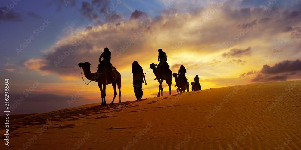 Fototapeta Caravan of camel in the sahara desert of Morocco at sunset time