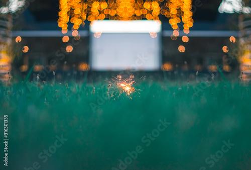 Fotografie, Tablou Flares On Grass