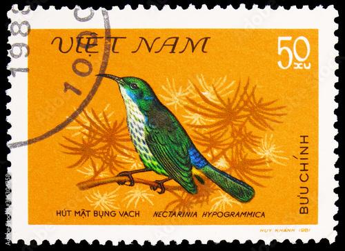 Postage stamp printed in Vietnam shows Purple-naped Sunbird (Hypogramma hypogram Poster Mural XXL