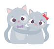 happy valentines day, cute couple cats romantic love