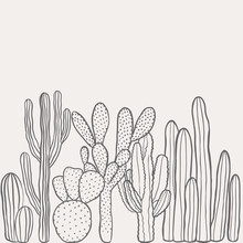 Hand Drawn Desert Cactus Background. Vintage, Botanical Vector Illustration.