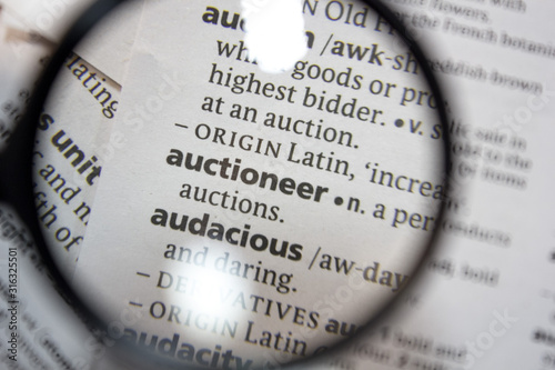 The word of phrase - auctioneer - in a dictionary. Wallpaper Mural