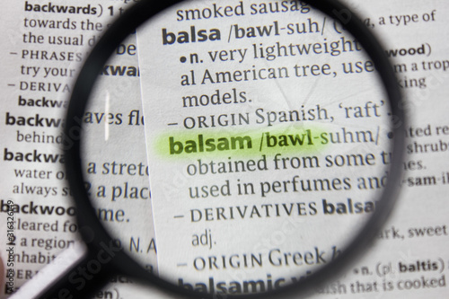 The word or phrase balsam in a dictionary. Canvas Print
