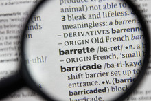The Word Or Phrase Barrette In...