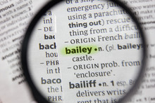 The Word Or Phrase Bailey In A Dictionary.
