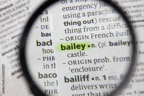 The word or phrase bailey in a dictionary. Canvas Print