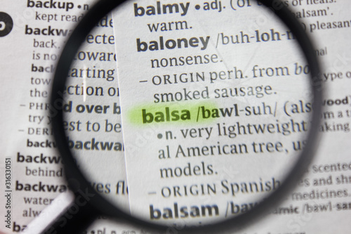 The word or phrase balsa in a dictionary. Canvas Print