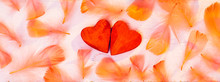 Valentine's Day Texture Backgr...