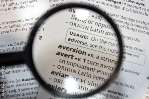 The word of phrase - aversion - in a dictionary. Wallpaper Mural