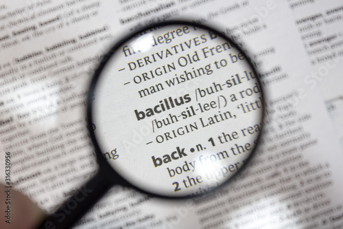 The word of phrase - bacillus - in a dictionary. Canvas Print