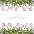 Hand painted Poster with Flowers and pink Lettering.Hand Drawn Lettering - Hello. Isolated on white background. Spring or Summer Greeting design. Frame with tulips.