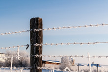 Barbed Wire On A Winter Day In...