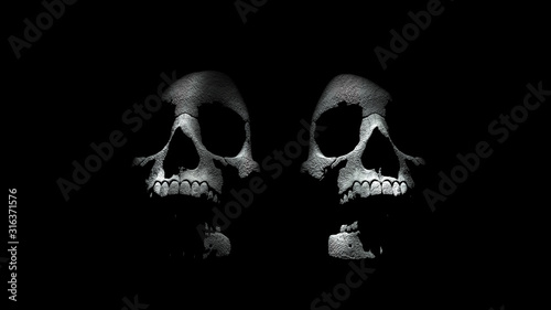 Fotografie, Tablou  Two Occult Skulls in Mystical Light