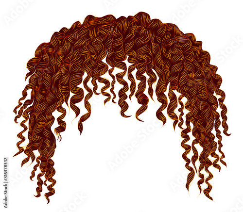 Fotografie, Obraz trendy curly disheveled african red hair