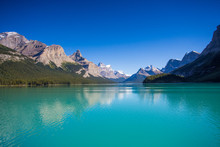 Maligne Lake In Jasper Nationa...