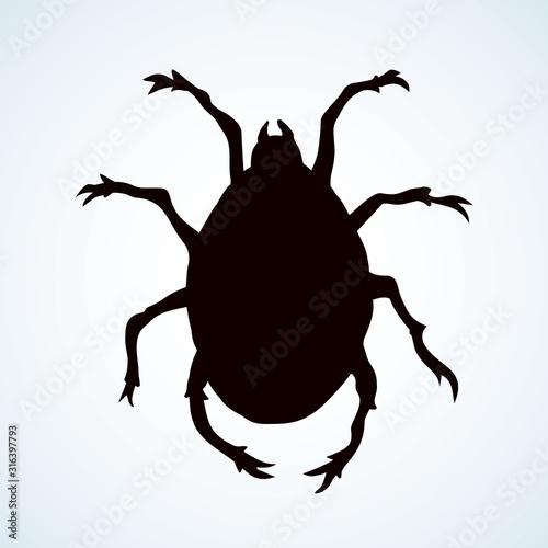 Photo The little mite. Vector doodle symbol