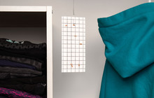 Cloth Moth Trap In Closet Or W...