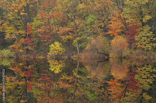 Photo Autumn landscape of the shoreline of Crooked Lake with mirrored reflections in c