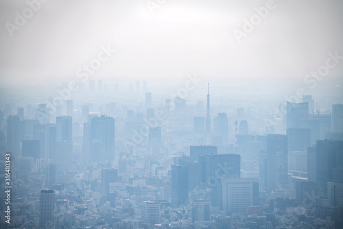 dust during daytime in a very polluted city - in this case Tokyo, Japan Canvas