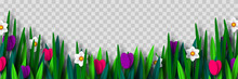 Vector Spring Flower Border Wi...