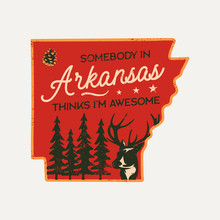 Vintage Arkansas Badge. Retro ...