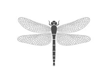 Dragonfly Logo. Isolated Drago...