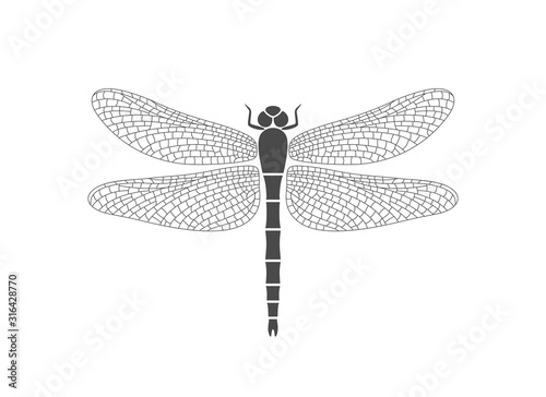 Dragonfly logo. Isolated dragonfly on white background Tableau sur Toile