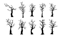 Spooky, Spindly Tree Silhouette Collection