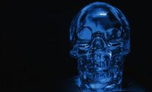 Glass Skull Backlit With Blue Light On A Black Background