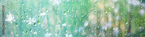 Obraz summer rain wet glass / abstract background landscape on a rainy day outside the window blurred background - fototapety do salonu