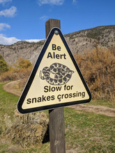 Slow For Snakes Crossing