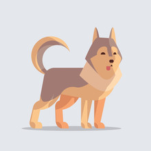 Husky Cute Dog Icon Furry Human Friends Home Animals Concept Full Length Vector Illustration