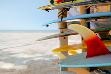 Colorful Surf Boards In Shop F...