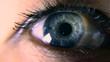 Close-up. Macro Blue Female Human Eye. Pupil Cornea Iris Eyeball Eyelashes. Blink Open Closed. 30p Slow motion