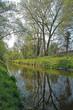 Rheinaltgewässer