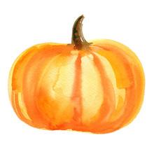 Piece Of Orange Pumpkin With S...