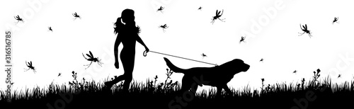 Vector silhouette of woman walking with dog on meadow with mosquitoes on white background Canvas Print