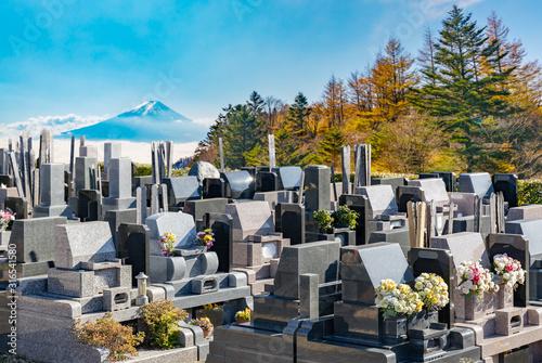 ご先祖様が眠る霊園のお墓 Canvas Print