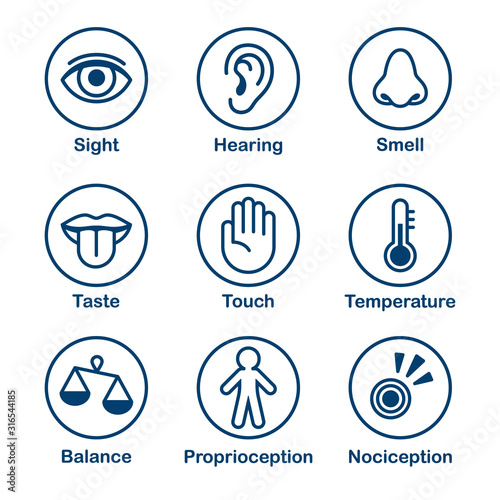 Human senses icon set Fototapete