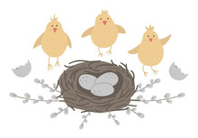 Vector Flat Funny Chickens Wit...