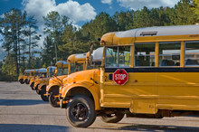 Many School Buses Lined Up In A Parking Lot