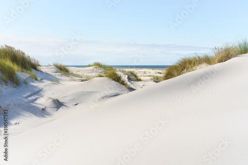 Obraz Dünenlandschaft an der Nordsee - fototapety do salonu