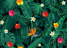 Tropical Seamless Pattern Vector Background With Exotic Palm, Banana, Monstera Leaves And Hibiscus, Strelitzia, Frangipani Flowers On Dark Black Backdrop