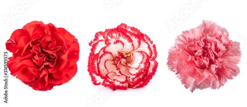 Carnations mix